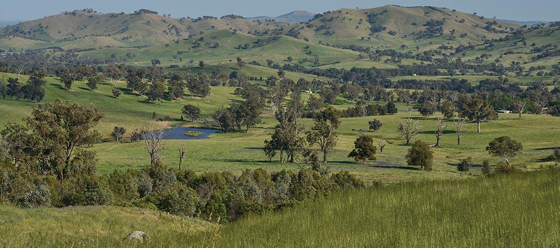 Bibbaringa Farm