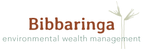 Bibbaringa Cattle Farm Logo