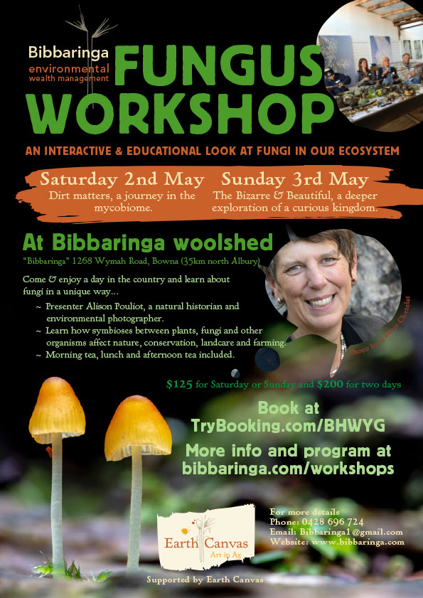 Fungus Workshop at Bibbaringa
